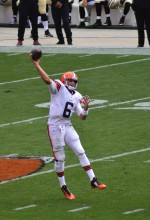 Brian Hoyer vs Saints