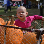The Prairie Peddler Festival Photo Gallery!