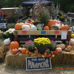 The Circleville Pumpkin Show- October 15th – 18th, 2014